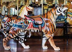 San Francisco Zoo Carousel Dentzel Tiger Outside Row Stander Mary Go Round, San Francisco Zoo, Sea Isle City, Painted Pony, Carousel Horses, Science Nature, Fantasy, Rocking Horses, Creatures