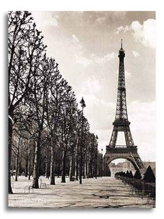 eiffel tower history and description
