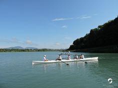 Aviron avec le club Aviron Bugey Haut-Rhône Rhone, Sport, Rowing, Top, Deporte, Sports