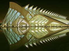 Valencia Science Museum - The City of Arts and Sciences is a large-scale urban recreation center for culture and science in the city of Valencia, Spain. Designed by Valencian architect Santiago Calatrava.