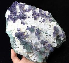 2125g Display Green Octahedral Fluorite plate zoned Purple edge China CM304556 #UnbrandedGeneric
