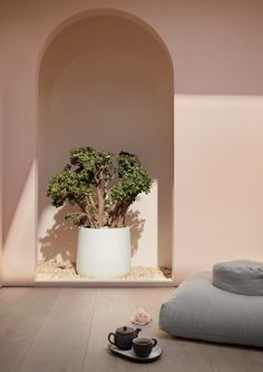 Standard Dose's Debut CBD Store Is a Visual Treat for the Senses #SOdomino #room #interiordesign #wall #architecture