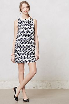 20歳の女子なら迷わず買うべき。猫模様! Chaton Shift #anthropologie http://us.anthropologie.com/anthro/product/clothes-new/27754753.jsp
