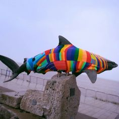 #yarnbomb shark statue at The Deep, Hull by Vintage Cafe. #hull2017