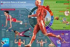 Infografías Elbibliote.com