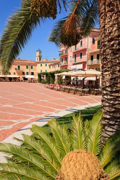 Italy, Tuscany, Livorno, Tuscan Archipelago National Park Elba island, Porto Azzurro, View of town square with palm tree in foreground