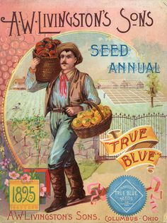 A.W. Livingston's Sons, Seed Annual, 1895