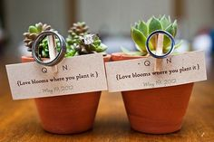 Send each guest home with a potted plant — it's a lovely sentiment because it'll continue to grow as your love grows