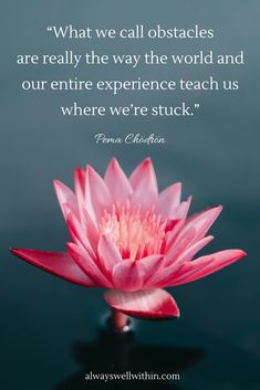 48 Pema Chodron quotes to help you find strength in difficult times. #pemachodron #pemachodronquotes #overcomingchallenges #overcomingdifficulties