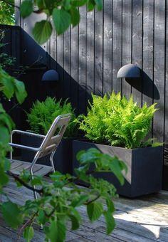 Zwarte schutting in de tuin
