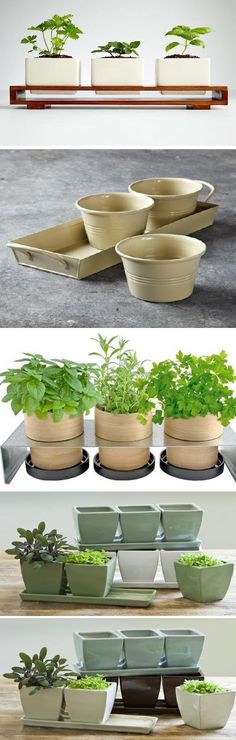 Bamboo Grow Pot Rack Indoor Pots and Planters