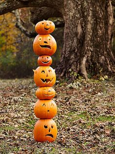 Stack-o-Lantern by familyfun: No worries, they're held up by a fence post.  #Halloween #Pumpkins