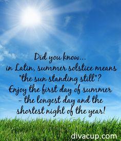 summer solstice party on pinterest summer solstice