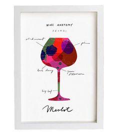 Wine Anatomy Print - Merlot