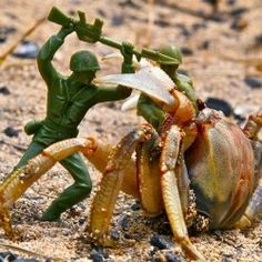 Toy Army Men - My Favorite Toy From Childhood by xriotdotbiz (check out the video of toy army men in action)