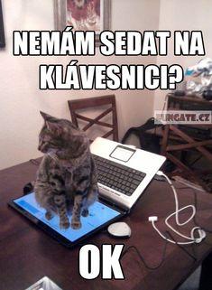 Nemám sedat na klávesnici?
