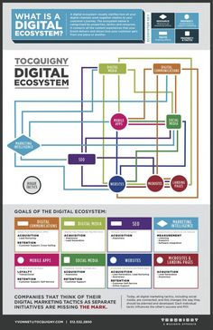 What is a digital ecosystem #infographic