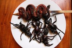 Fried Spider and Snake Top 10 Bizarre Foods That People Usually Eat