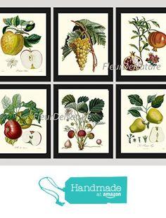 Botanical Fruit Set of 6 Prints Antique Beautiful Apple Grape Pomegranate Strawberry Pear Fruits Home Room Decor Wall Art Unframed from LoveThePrint https://www.amazon.com/dp/B018RDBBTU/ref=hnd_sw_r_pi_dp_vRr8xbBEZYS2C #handmadeatamazon