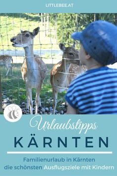 Heart Of Europe, In The Heart, Dads, Travel, Animals, Klagenfurt, Holidays, Camping With Toddlers, Coach Tours