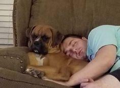 LOST DOG: 12/30/2017 - Hazen, Arkansas, AR, United States. Ref#: L39298 - #CritterAlert #LostPet #LostDog #MissingDog