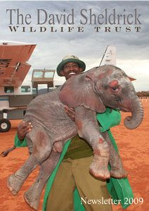 The David Sheldrick Wildlife Trust: This is an organization/nursery that helps out orphaned animals (elephants, rhinos, hippos etc.) and rehabilitates them. One day I will be donated a gracious amount if not adopting a baby elephant :)