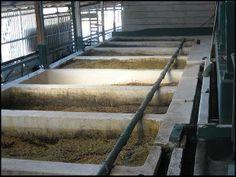 coffee processing plant, Doka Estate, Alajuela, Costa Rica