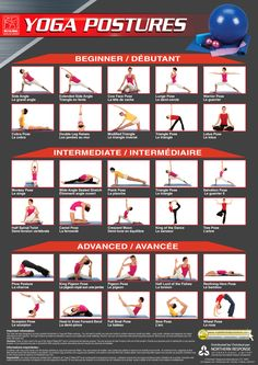 85 best group yoga poses images  partner yoga yoga poses