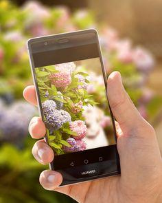 Schärfentiefen-Spielerei des Huawei P9 Plus #Huawei #HuaweiP9