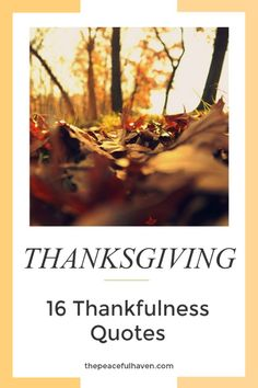 Be encouraged and inspired by these 16 Thankfulness Quotes!  #thanksgiving #thankfulness #quotes