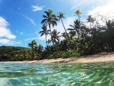 Bula Fiji! My favourite country! I want back. #beach #beachlife #palmtrees #islandlife #island #paradise #wanderlust #travel