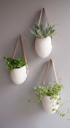 Wall Option #2: hanging succulents (6-8 straight across the wall in a horizontal line) - white ceramic + leather strap and light and polish to a dark wall - plants add element of movement and softness to a space