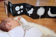 The Kavanaugh Report: Montessori Babies