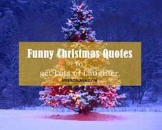 40 #Funny #Christmas #Quotes to get Lots of Laughter