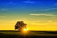 Your postcard will go from drab to fab with photos! Happy Sabbath, Sabbath Day, William S Burroughs, Learning To Relax, God Is Amazing, Single Tree, Areas Of Life, Sunset Pictures, Free Stock Photos