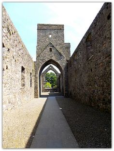 Dominican Abbey in Carlingford.