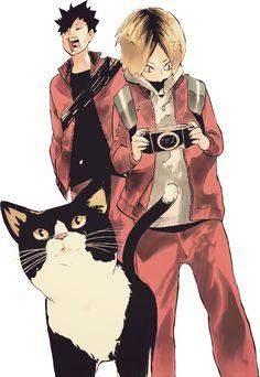 Kitty Cat . Nekoma . Kuro . Kenma - Haikyuu!!