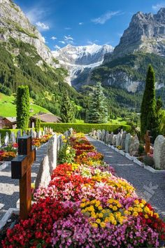 Jungfrau Mountain in Switzerland  The Jungfrau is one of the main summits of the Bernese Alps, located between the southern canton of Bern and the northern canton of Valais, halfway between Interlaken and Fiesch.