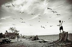 """""""Martılar ki sokak çocuklarıdır denizin...""""   - Can Yücel  #sözler #anlamlısözler #güzelsözler #manalısözler #özlüsözler #alıntı #alıntılar #alıntıdır #alıntısözler"""