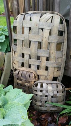 Some of my tobacco baskets---Amy Duncan, Winchester IL.