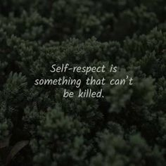 60 Self-respect quotes to improve your self-esteem. Here are the best respect yourself quotes and sayings to read that will enlighten you ab. Respect Yourself Quotes, Self Respect Quotes, Trust Yourself, Improve Yourself, Rather Be Alone, Comparing Yourself To Others, Learn To Love, Self Confidence, Self Esteem