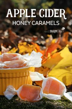 These delicious Apple Cider Honey Caramels are made using fresh apple cider, butter, honey, & a dash of cinnamon. (They freeze well too! Caramel Recipes, Honey Recipes, Fall Recipes, Whole Food Recipes, Cooking Recipes, Holiday Recipes, Cobbler, Fudge, Apple Cider And Honey
