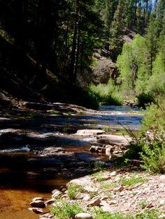 Fly Fishing Arizona's creeks