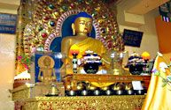 The Dalai Lama temple complex, on Temple Road, is just a short walk from the Mcleod Ganj bus stand in upper Dharamsala. The temple complex is open daily, from sunrise to sunset, and visitors are welcome to explore the peaceful ambiance of the surroundings.