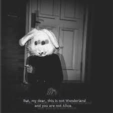 alice in wonderland tumblr - Google Search