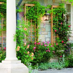 "Make this ""eye catching"" trellis -For a trellis like this, the exact dimensions of the pieces can make a big difference in the overall appearance. We show lattice that is ¾ inch thick and 11⁄8 inches wide. You could use standard 1 by 2s, which are ¾ inch by 1½ inches, but the result would be surprisingly clunky-looking."