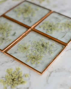 CULTURE N LIFESTYLE — Stunning Pressed Flower Art by Karly Murphy...