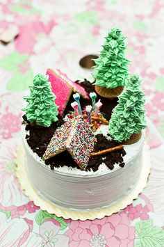 camping birthday cake - I love how simple this would be... just a regular white cake and decorate the top.