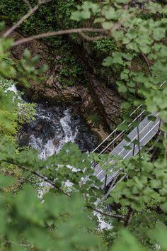 Eine gemütliche Wanderung zum beeindruckenden Trefflingfall! Plants, Waterfall, Seasons Of The Year, Fall, Plant, Planting, Planets