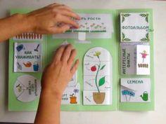 """Лэпбук """"Мой сад"""" - для юных огородников :: Это интересно!"""